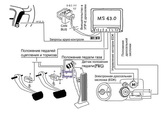 bmw m54 ms 43.0 EML