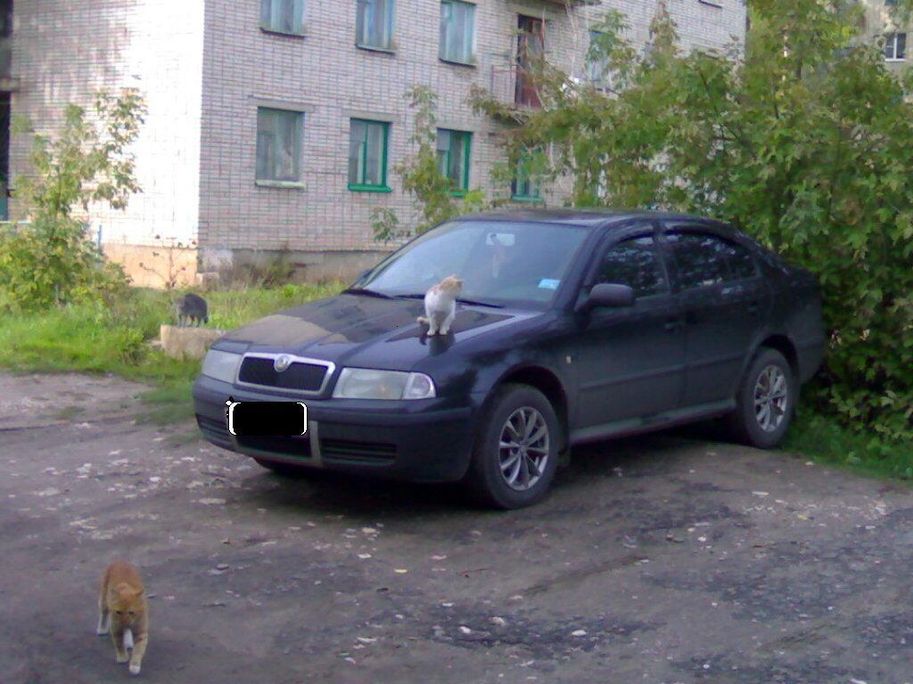 Авто Шкода Октавия Тур-1.4-75-2007