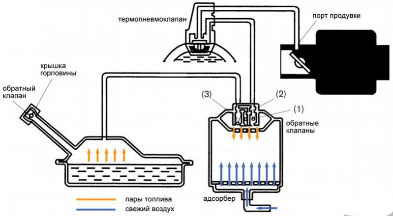 Схема системы EVAP