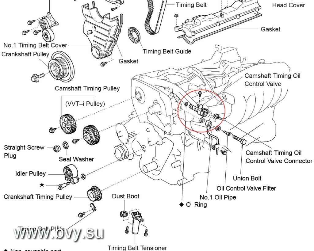рисунок схема элементов системы VVTi